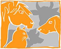 unvermittelbaren Tieren an ihren Pflegeplätzen